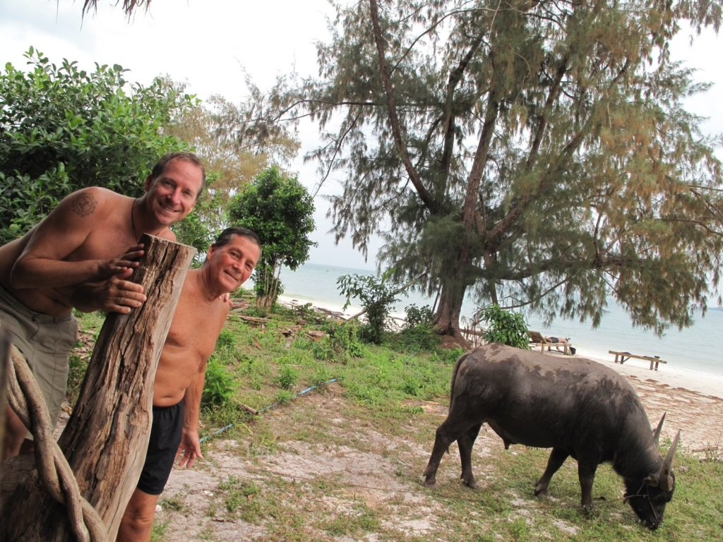 Travel in Asia podcast: Animal experiences in Asia - Buffaloes everywhere